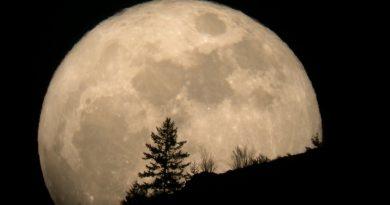 Xe nato in cressar de luna – Lunario Enologico 2017